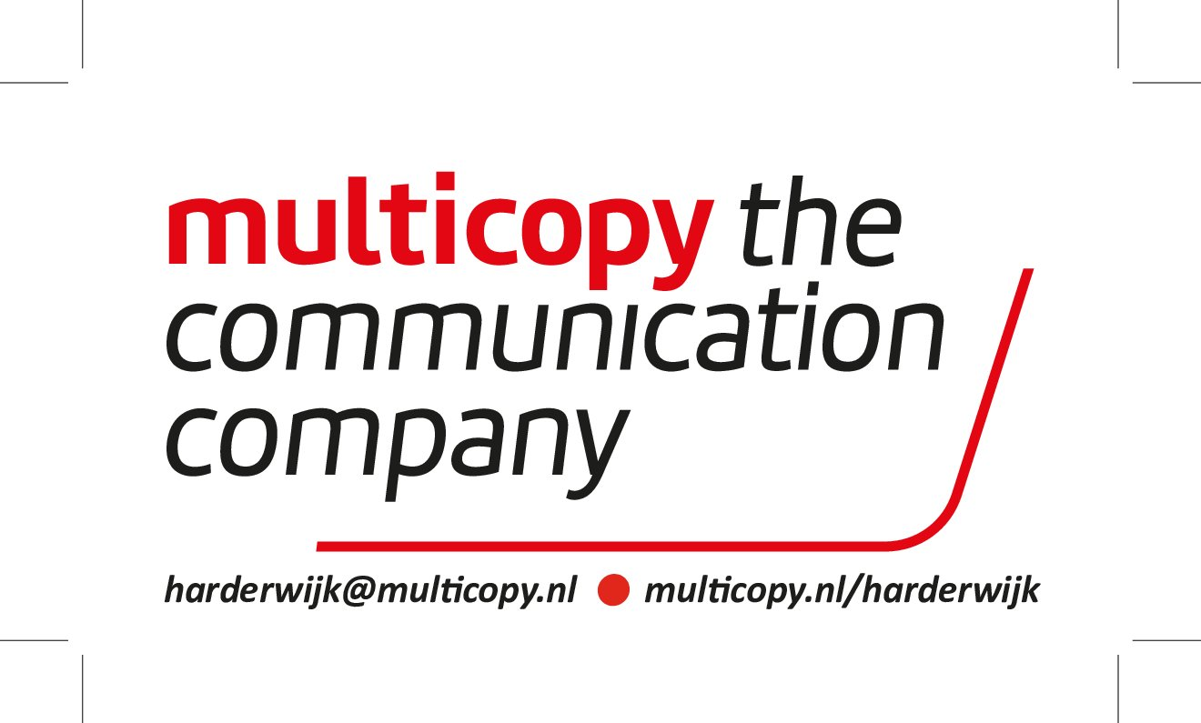 Multicopy logo Aaltjesdag