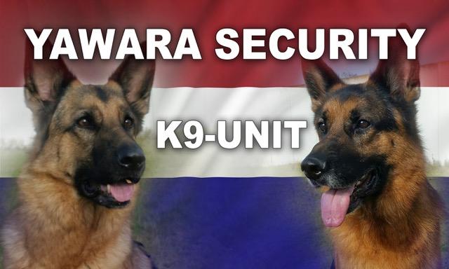 logo yawara
